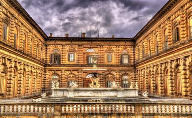 Fontana del Carciofo in Florence - Italy
