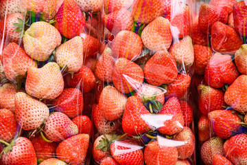 Strawberries in the clear plastic pack.