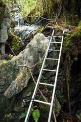 Pinnacles trek in gunung mulu national park