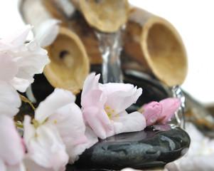 fleurs de cerisier sur galet dans une petite fontaine