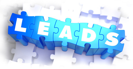 Leads - White Word on Blue Puzzles.
