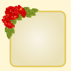 Golden frame with red hibiscus vector