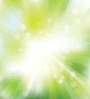 Vector green, shine background with rays and lights.