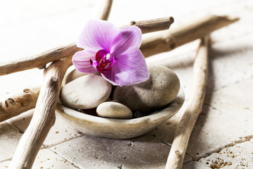 mineral design and drift wood for soft spa decor