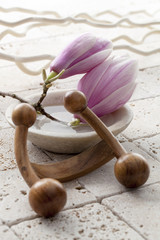 magnolia flowers for soft massage
