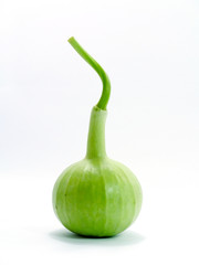 The green gourds on a white background.