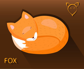 Sleeping fox put a muzzle on the tail