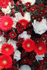 Rote und weiße Friedhofsblumen