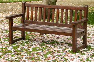 favourite bench