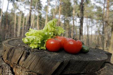 Picnic set of vegetables on stump in forest