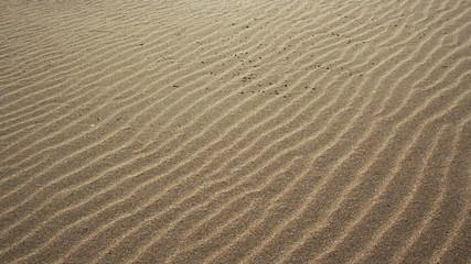 sand on the sea coast