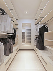 Large wardrobe in a modern style interior
