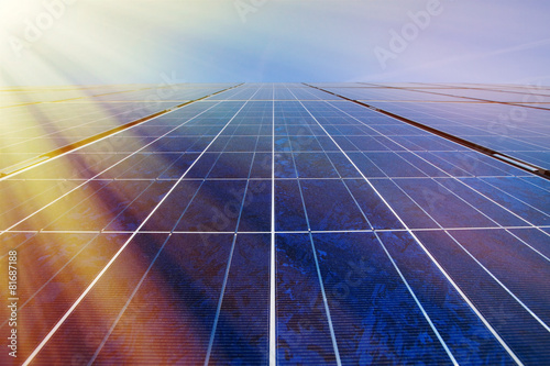 canvas print picture Solar panels in sunlight