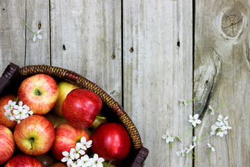 Basket of red apples and blossoms on wood background
