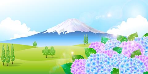 富士山 あじさい 背景