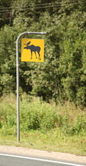 sign indicating the risk of elk