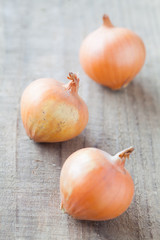 Small fresh gold onion on wood background