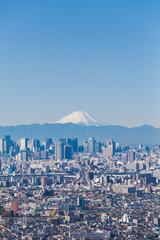 Tokyo city view and Mountain Fuji in winter season