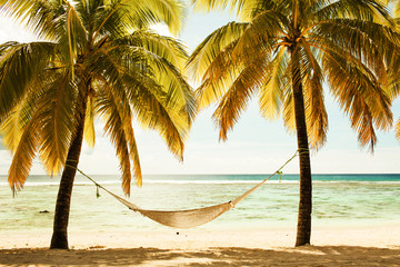 Hammock between two palm trees on the beach during sunset, cross