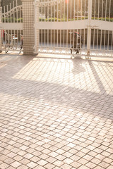 sunlight on the floor