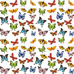 butterflies flying