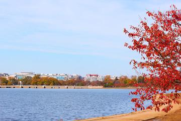 Panorama Washington DC near the Tidal Basin in autumn