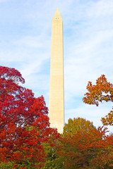 Washington Monument surrounded by trees in autumn foliage