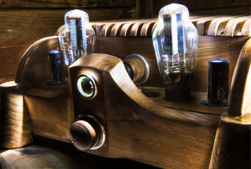 Natural wood tube amplifier - locust tree body