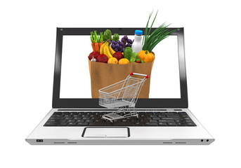 Online Grocery Shopping Illustration