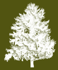white fir tree silhouette from dots isolated on green
