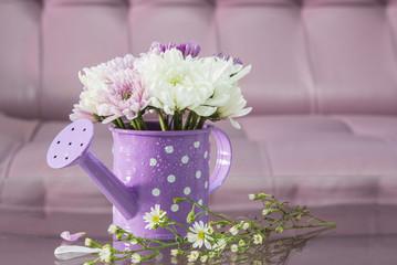 Chrysanthemum in watering decorated living room
