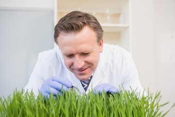 Happy scientist examining grass