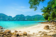 Leinwanddruck Bild - Fabulous beach with exotic plants and white sand on a background
