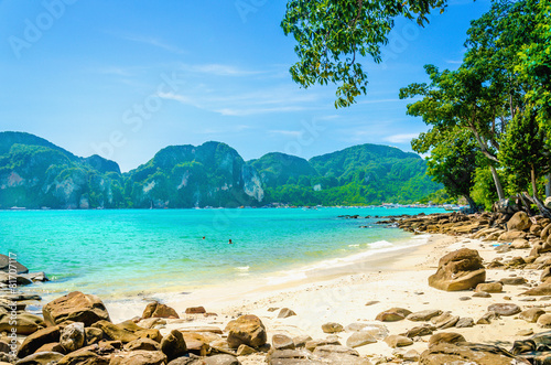 Foto op Aluminium Eiland Fabulous beach with exotic plants and white sand on a background