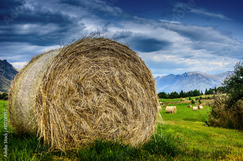 Poster Heuvel hay stack in a summer field