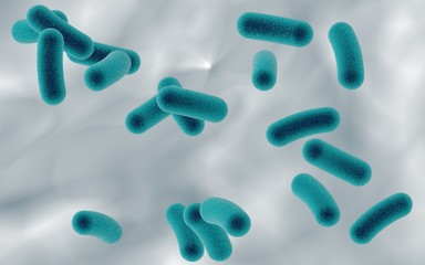 Three-dimensional drawing of rod-shaped bacteria