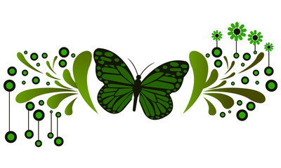 butterfly 48