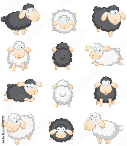 Schafe großes Set - 81712792