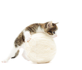 kitten and ball of thread on a white background