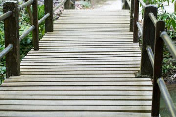 wooden bridge, wooden bridge cut to tropical forest