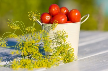 Small red tomatoes and dill on  wooden table in summer