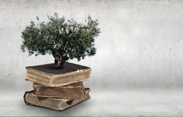 Reading develops imagination