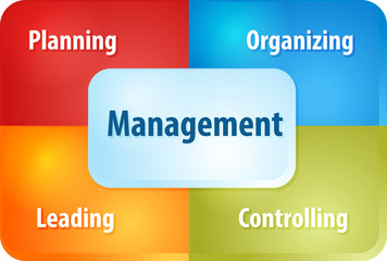Management components business diagram illustration
