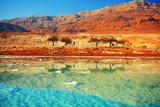 Fototapety Dead sea salt shore
