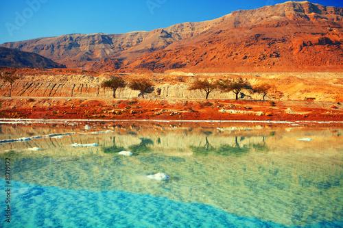 Foto op Canvas Midden Oosten Dead sea salt shore