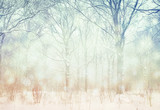 Fototapety Winter  wonderland forest background.