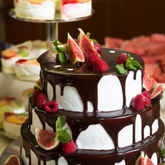 Chocolate cake with figs and raspberries