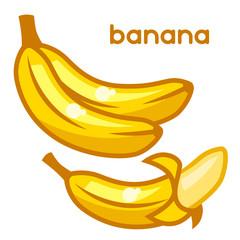 Stylized illustration of fresh bananas on white background