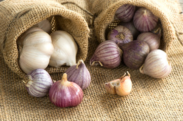 Single garlic for healthy
