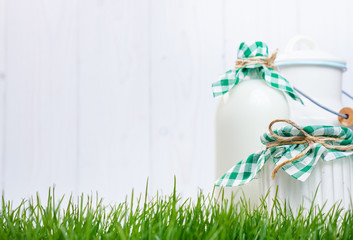 Dairy products on the grass. Vintage style